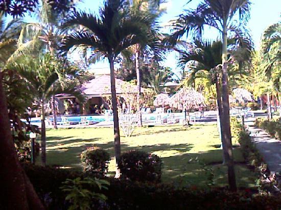 Hotel El Colibri: jardin