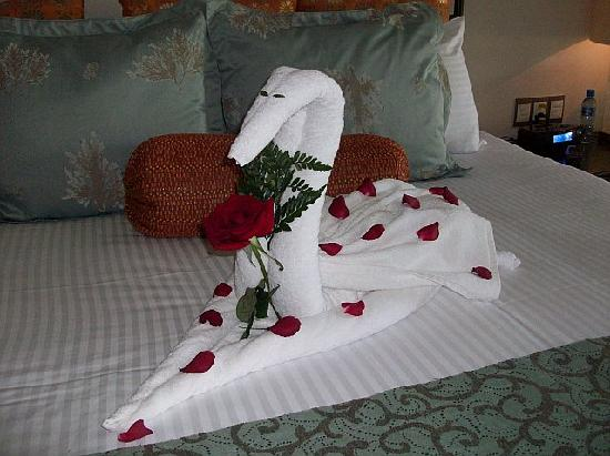 Secrets Maroma Beach Riviera Cancun : Towel art left on our bed-1st day