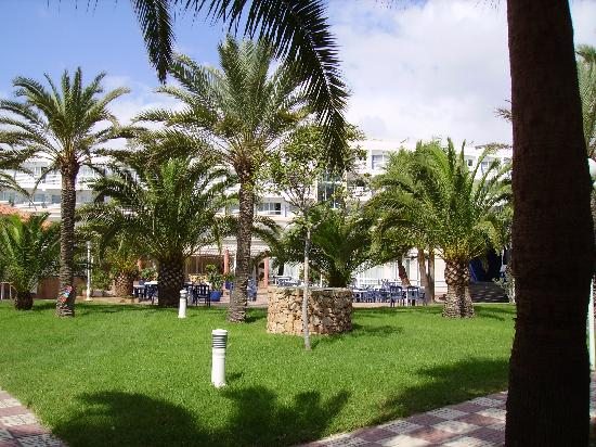 Insotel Hotel Formentera Playa: cortile