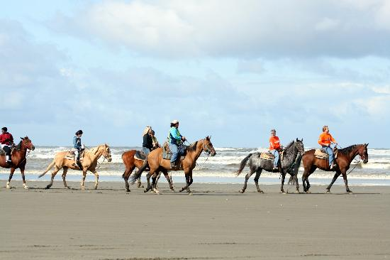 Horseriding On The Beach Picture Of Ocean Shores