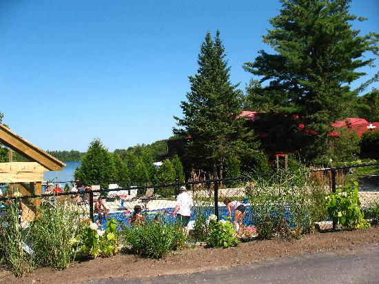 Saint-Hippolyte, Canada : Outdoor Pool (lake in background)