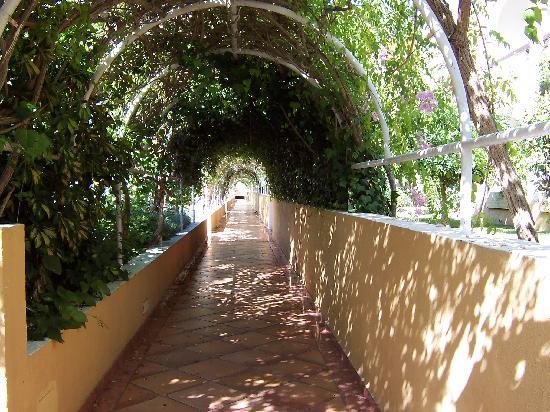 Melia Atlanterra: Un bonito corredor