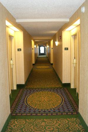 阿倫德爾·米爾斯巴爾的摩漢普頓套房飯店張圖片