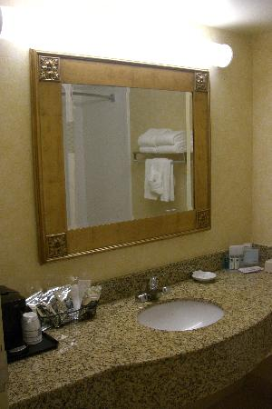Hampton Inn and Suites Arundel Mills / Baltimore: Bathroom vanity