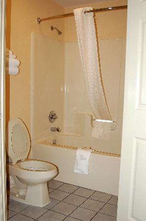 Baymont Inn & Suites Thomasville: Spotless bathroom!