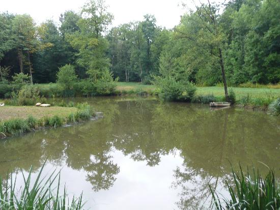 Chez Eric et Sylvie : the lake