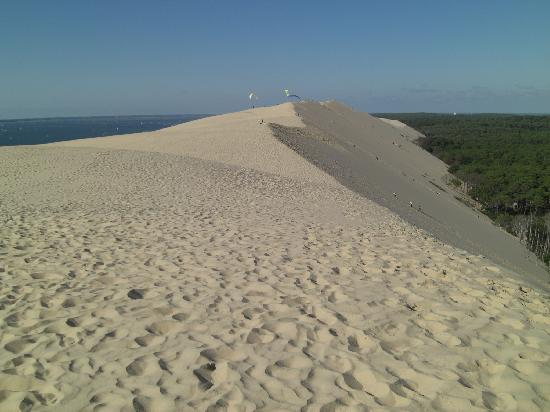 dune du pyla photo de dune du pilat la teste de buch tripadvisor. Black Bedroom Furniture Sets. Home Design Ideas
