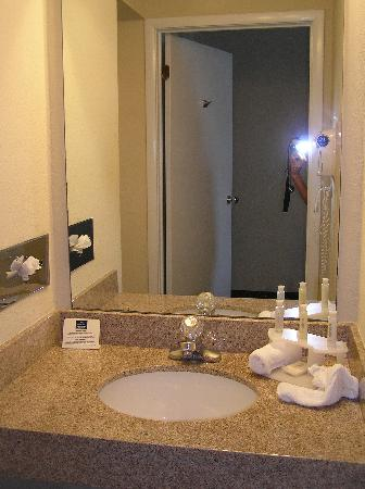 Wingate by Wyndham Atlantic City West: Holiday Inn Bathroom Vanity