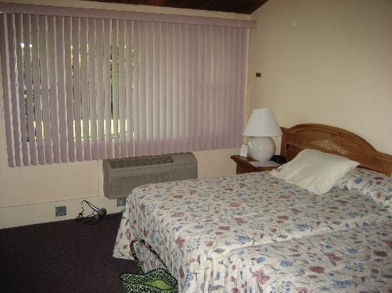 Island Inn: room