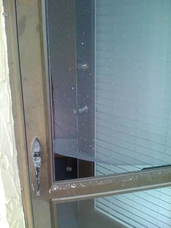 Surf and Sand Beach Motel: Hole in screen door to patio