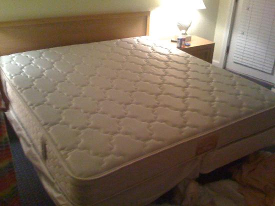 Surf and Sand Beach Motel: Mattress after I ripped the covers off
