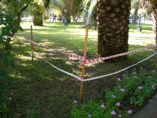 Sural Saray Hotel: Le jardin de palmiers