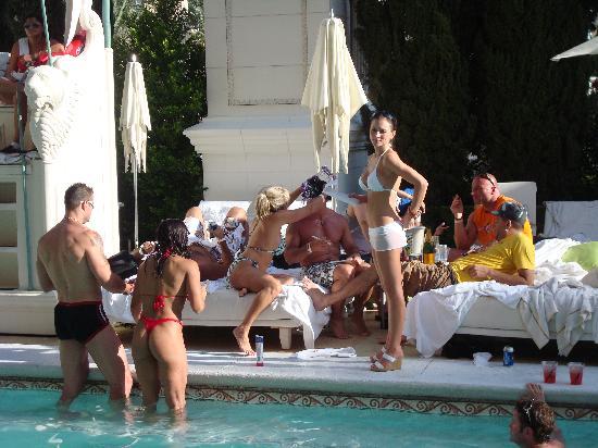 Florida transvestite clubs