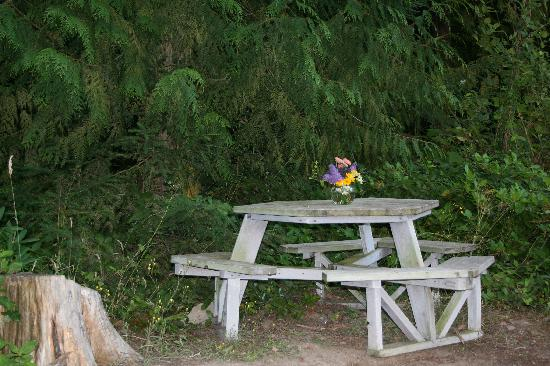 Bond Ranch Retreat: Private spot for al fresco dining outside our cabin