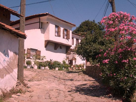 Dionysos Pension: .