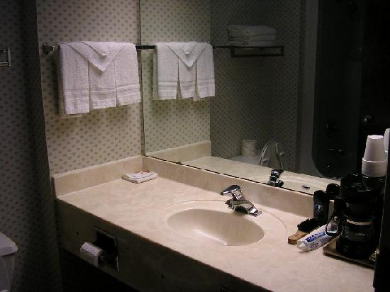 bathroom sink area picture of super 8 rock hill rock. Black Bedroom Furniture Sets. Home Design Ideas