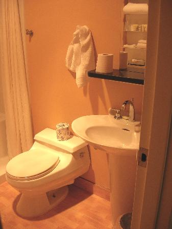 The Woodlands Resort, An Ascend Collection Hotel: Bathroom toilet/sink from door