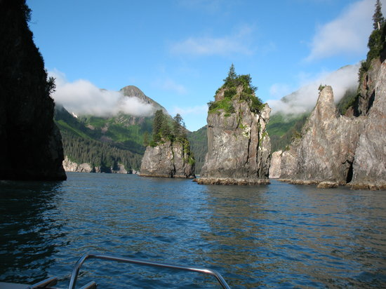 Alaska Saltwater Lodge Small Group Whale Watching, Wildlife & Glacier Tour