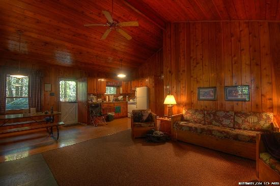 Mountain Springs Lake Resort: Living room and kitchen.