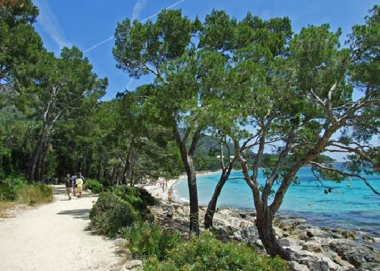 Mallorca, Spanien: Formentor beach