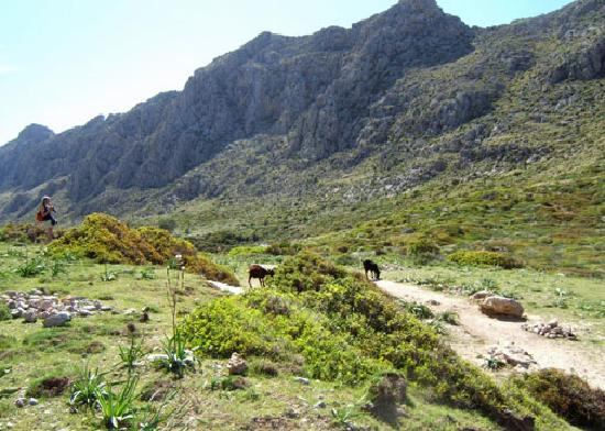 Majorca, Spain: Walking in Boquer Valley