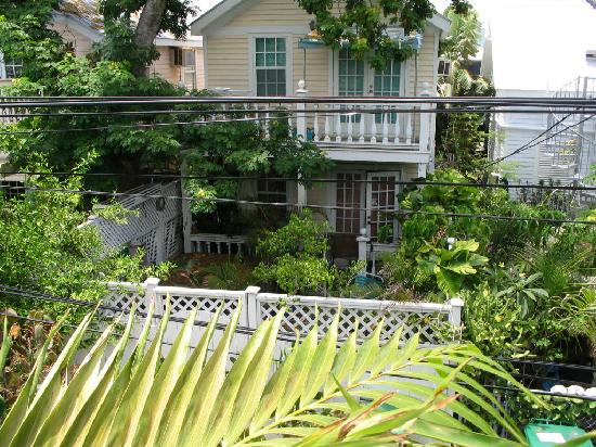 Budget Key West: View from back porch
