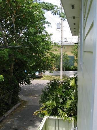 Budget Key West: Road behind motel - view from back porch