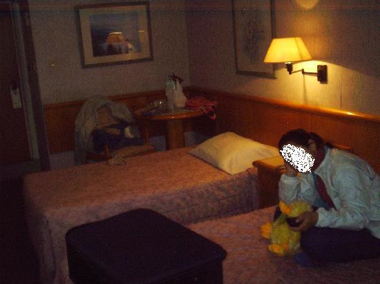 Hotel Lafayette: Room