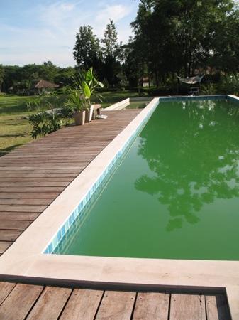 Hakuna Matata Natural Resort : The greeny pool