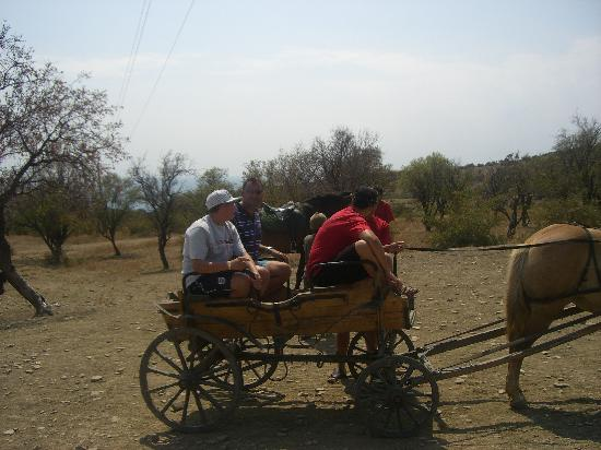 Sol Nessebar Palace: Off road adventure - horse & cart