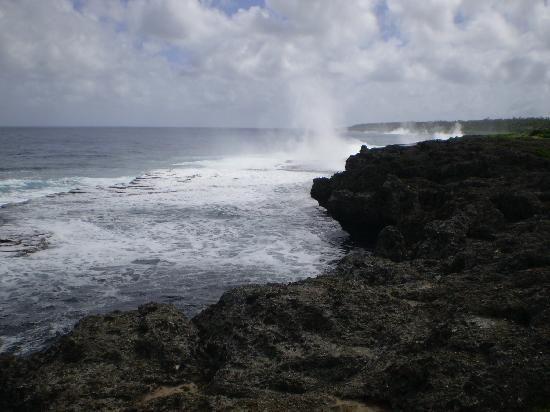 Heilala Holiday Lodge: Blow Hole Coast