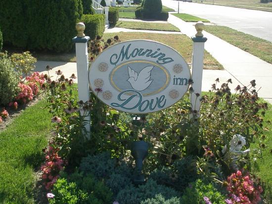 Morning Dove Inn Belmar