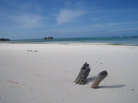 Zanzibar Archipelago照片