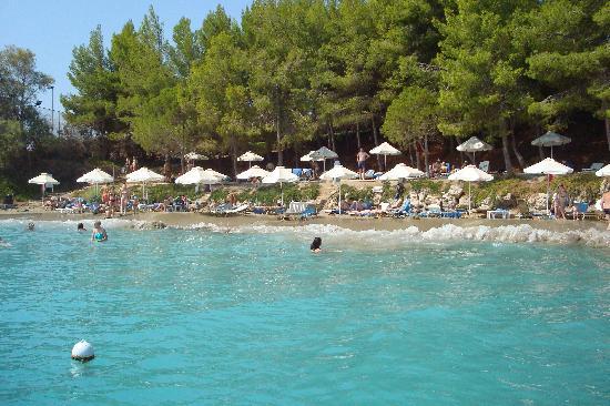 Candia Park Village: beach