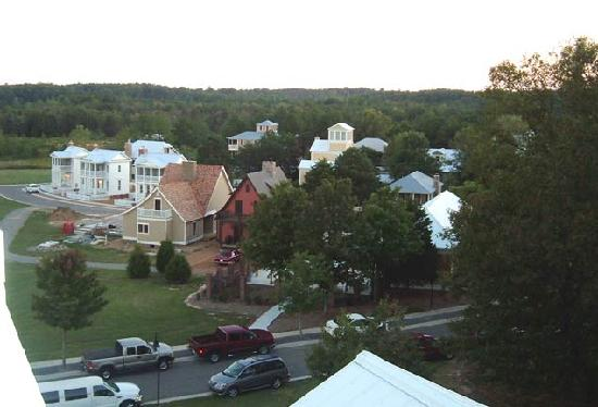 The Lodge at Gorham's Bluff: View from Lodge outlook