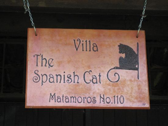 Spanish Cat Language School: Spanish Cat Sign