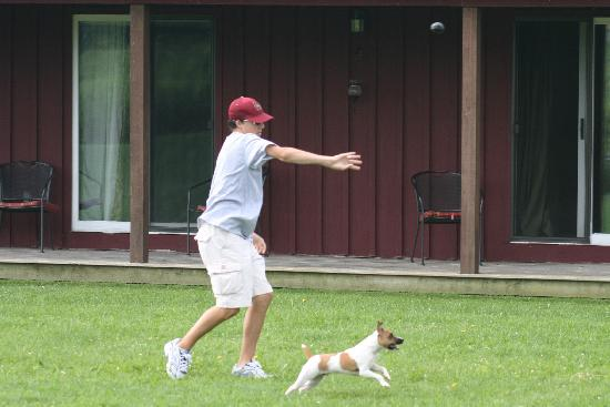 The Meadowlark Inn Cooperstown: Baseball at the Meadowlark