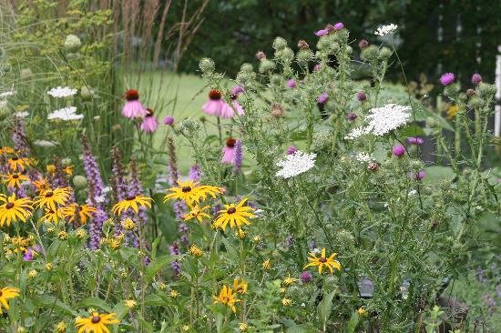 The Meadowlark Inn Cooperstown: Gardens at the Meadowlark