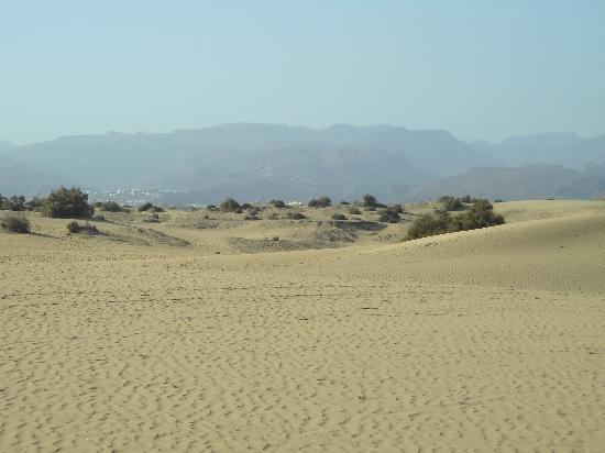Gran Canaria, Spain: dune di maspalomas