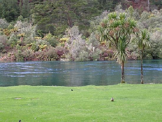 Huka Lodge: View from porch