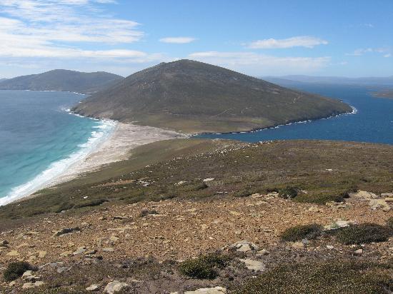 福克蘭群島張圖片