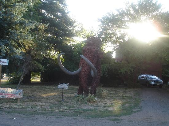 ‪‪Fossil Lodge‬: Mammoth Statue‬
