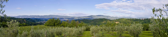 Agriturismo Savernano: The view from the pool area