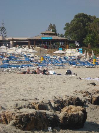 Nissi Beach Resort: Pelican Bar