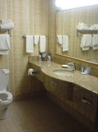 Hampton Inn St. Louis Southwest : Bathroom