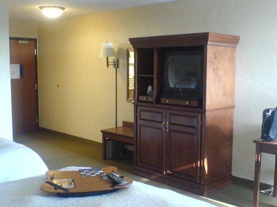 Hampton Inn St. Louis Southwest : Room