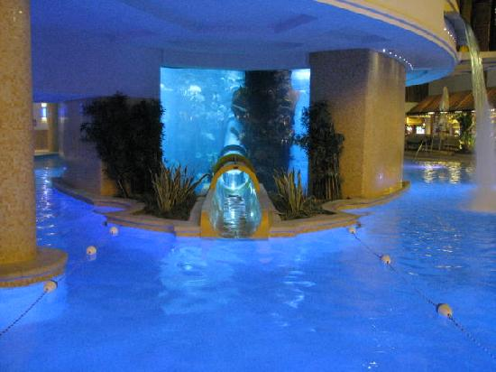 coming out of the slide - Picture of Golden Nugget Hotel ...