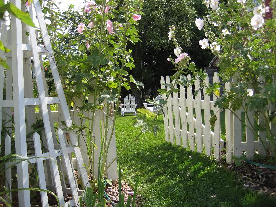 Blacksmith Inn On the Shore: Through the gate to back / side yard