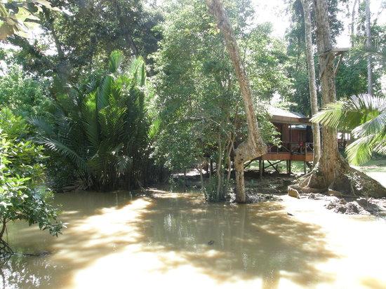 Pulau Tiga Resort