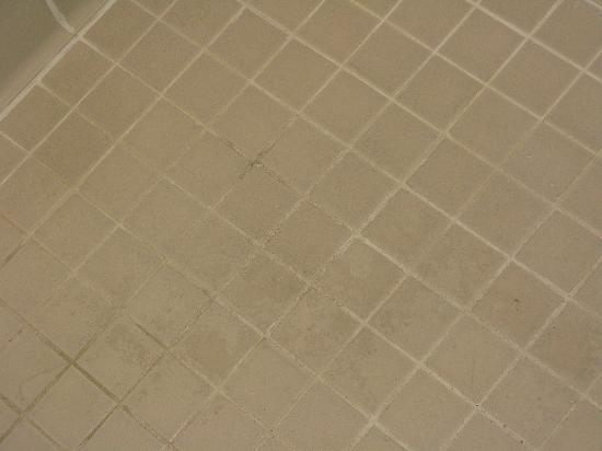 Comfort Inn Conference Center: Tile in Bathroom